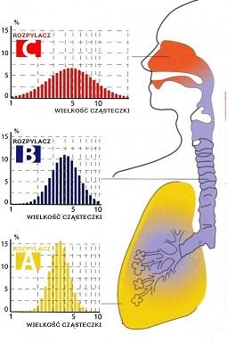 Wykres inhalacji